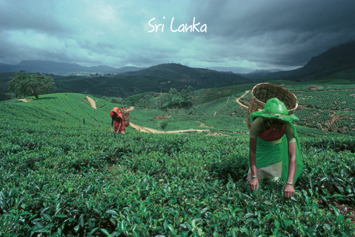 GrandesViagens-Srilanka