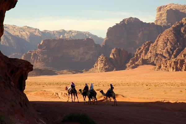Jordania_Wadi Rum Camels