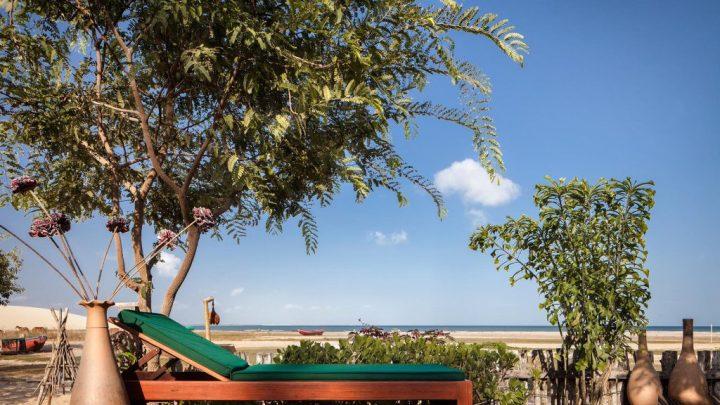 MG_8226-pigrissadera-na-praia-base-1024x576